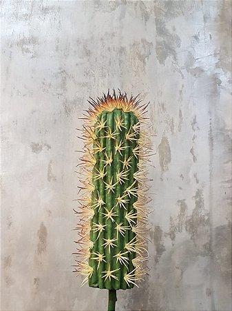 Cactus 32cm