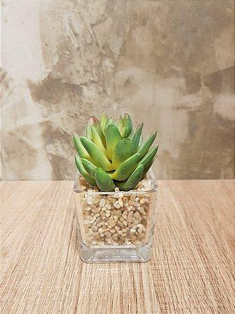 Mini Suculenta - Vaso de Vidro