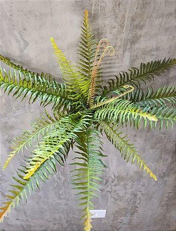 SAMAMBAIA 50CM SY18020