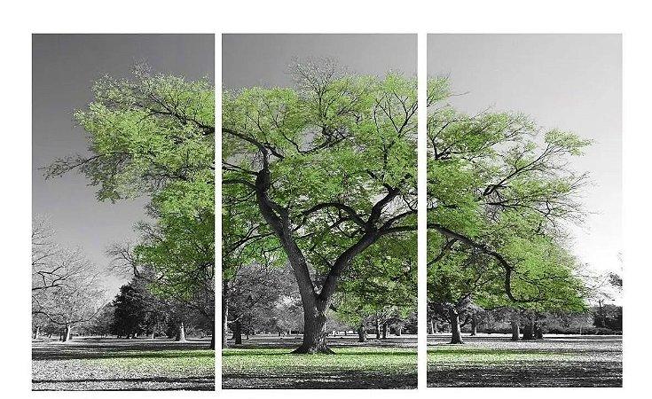 Quadro Digital Arvore Verde - Trio - 60x120 (3 pçs 40x60)