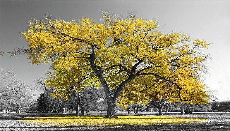 Quadro Arvore da Vida Amarela - Diversos Tamanhos