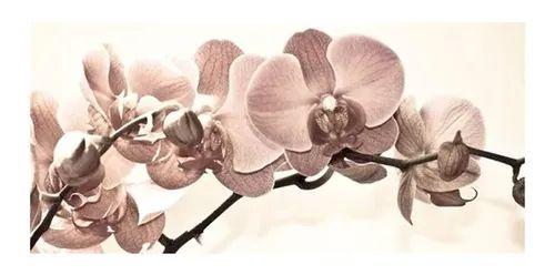 Quadro Orquídea Bege - Diversos Tamanhos