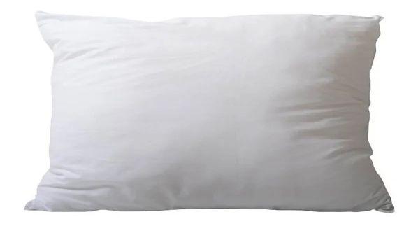 1 Enchimento - 30x50 para almofada