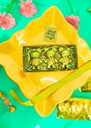 BOX URSO OURO