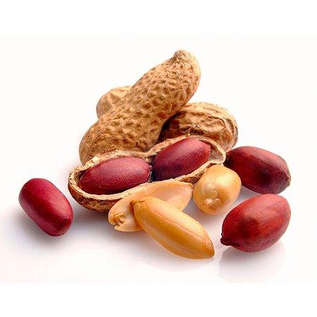 Amendoim Torrado com Casca Premium