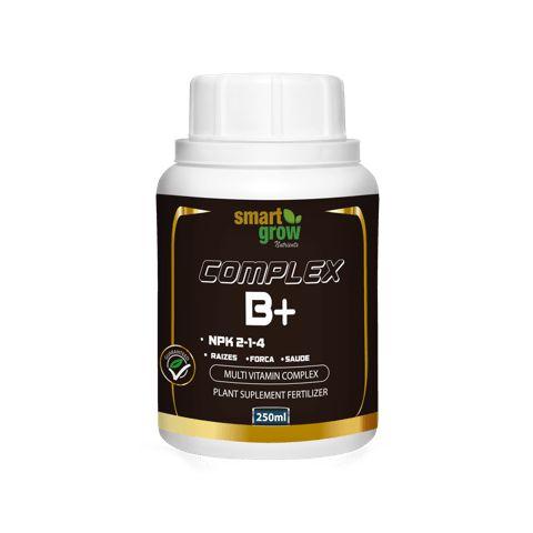 Complex B+ 250 ml