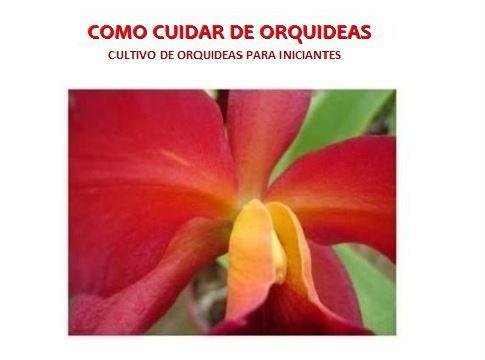 APOSTILA: Como Cuidar de Orquídeas