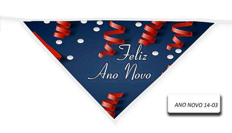 ANO-NOVO-14-03