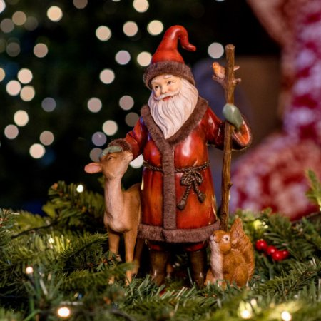 Noel com a Turminha Silvestre