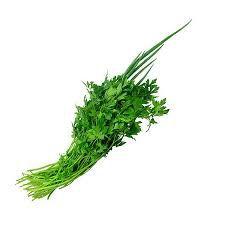 Cheiro Verde JFC Un