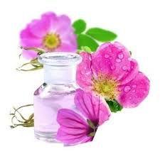 Ext. Glicolico de Rosa Mosqueta