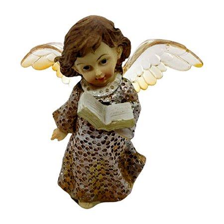 Anjo Luminária - Biblia