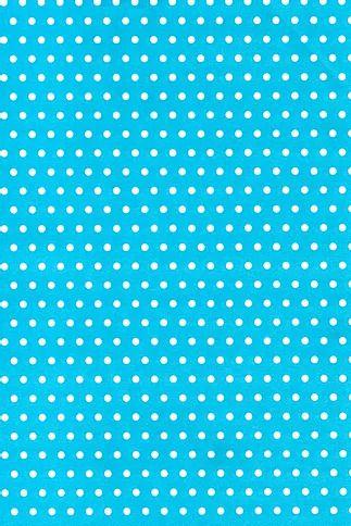 Papel Dupla Face Poa Medio Azul/Branco Premiatta 48x66cm