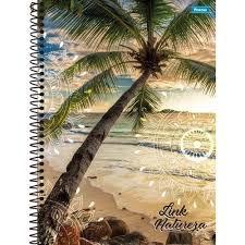 Caderno Foroni 10X1 Link Natureza Coqueiro 200 folhas
