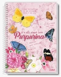 Caderno Credeal 10X1 Purpurina It's All About Love 200fls