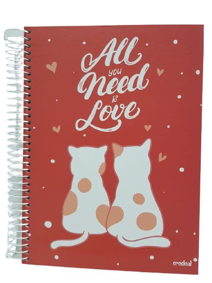 Caderno Credeal 10X1 Love All You Need Is Love 200 folhas