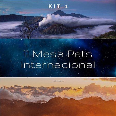 Kit 1 - Mesa Pets - Internacional