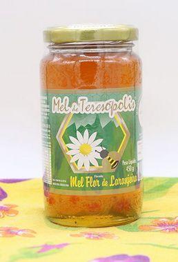 Mel Florada de Laranjeiras 450 g