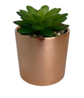 Vaso Rose Gold C/ Suculenta 4887