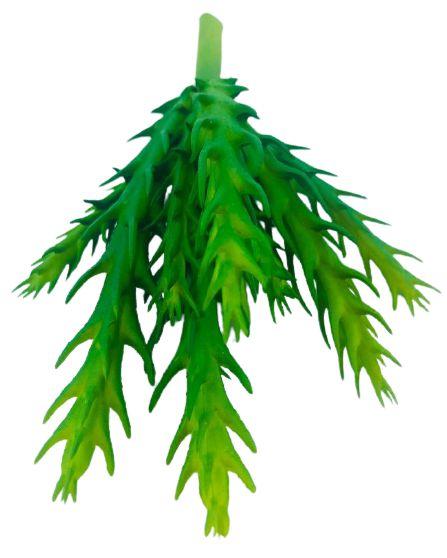 Suculenta 16CM Verde Folha 06763