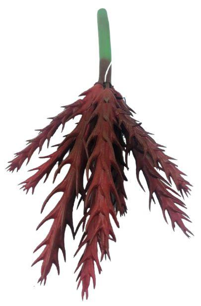 Suculenta 16CM Vermelho 06763