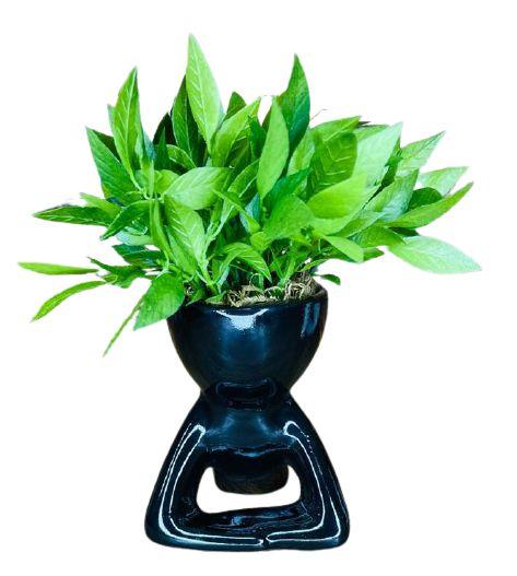 Vaso Cerâmica BOB Deitado M Preto
