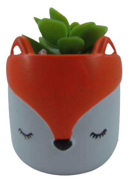 Raposa Vaso Cerâmica C/ Suculenta 4886