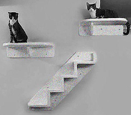 Escada Para Área Externa com 02 prateleiras