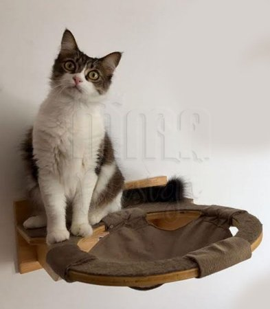 Cesto com prateleira modulada para gato