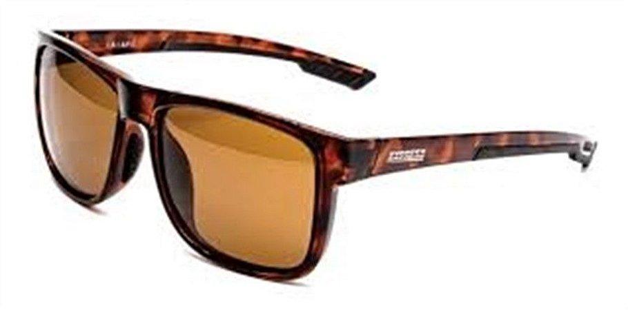Óculos Express Polarizados