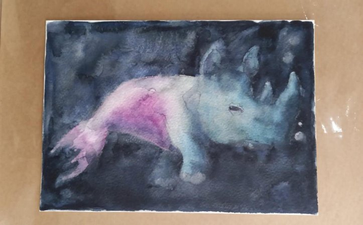 Rinoceronte marinho