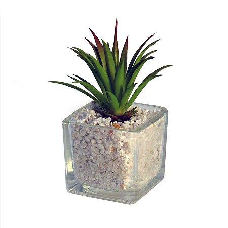 Vaso de Cacto Vidro Transparente 10 cm Bela Flor