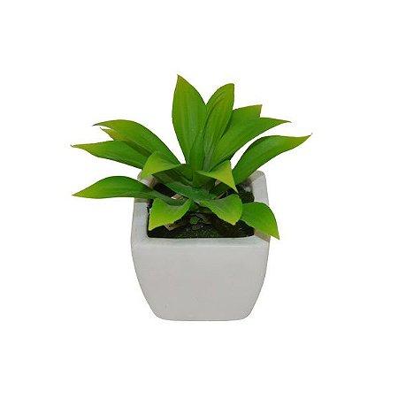 Vaso de Cacto Louça Branca 15 cm Bela Flor