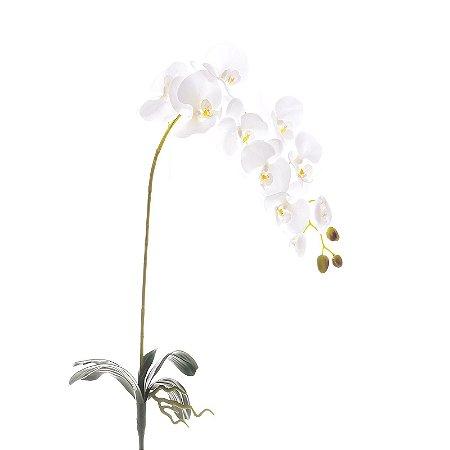 Orquídea Branca Planta Permanente 95 cm Bela Flor