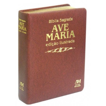 Bíblia Sagrada Edição Ilustrada Luxo - Media - Marrom