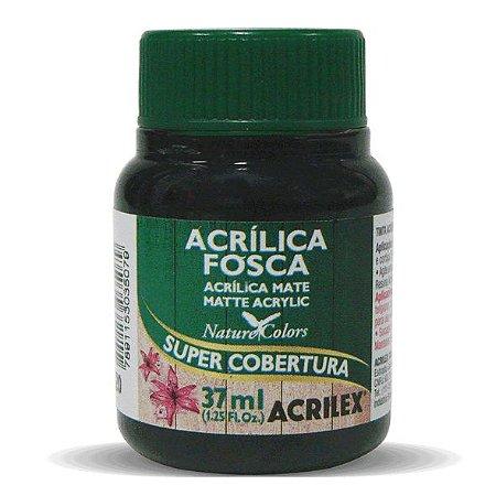Tinta Acrílica Fosca Acrilex 37ml - Preto 520