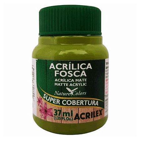 Tinta Acrílica Fosca Acrilex 37ml - Verde Pistache 570