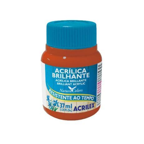 Tinta Acrílica Brilhante Acrilex 37ml - Cerâmica 506