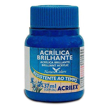 Tinta Acrílica Brilhante Acrilex 37ml - Azul Turquesa 501