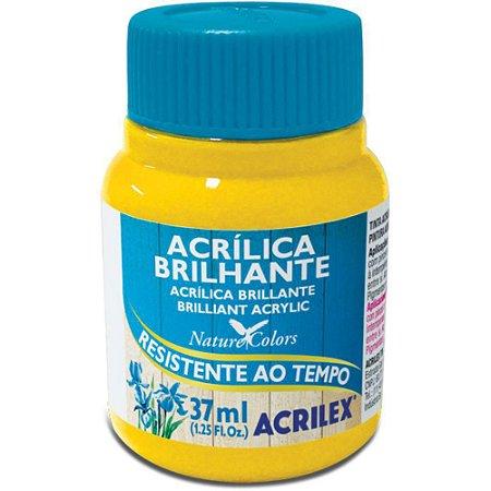 Tinta Acrílica Brilhante Acrilex 37ml - Amarelo Ouro 505