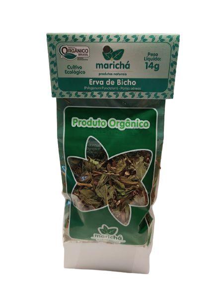 Chá Orgânico: Erva de Bicho