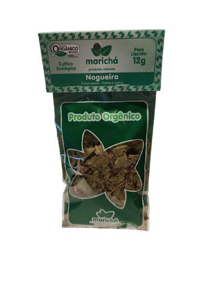 Chá Orgânico: Nogueira