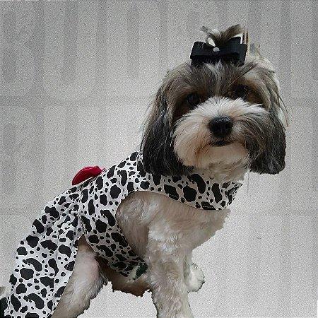 Vestidinho para Pet Zebrinha Roupinhas para Pet BudBul