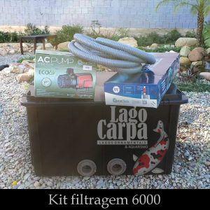 Filtra até 6.000 - Lago Carpa