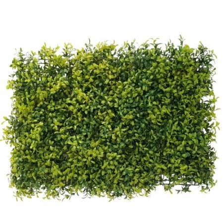Placa de Eucalipto Premium 60 cm x 40 cm