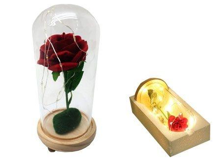 Cúpula de Vidro com Rosa Permanente e Fio de LED