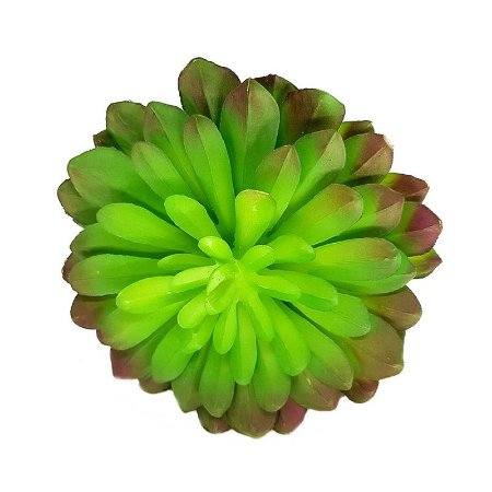 Suculenta Echeveria em Silicone Verde e Roxa