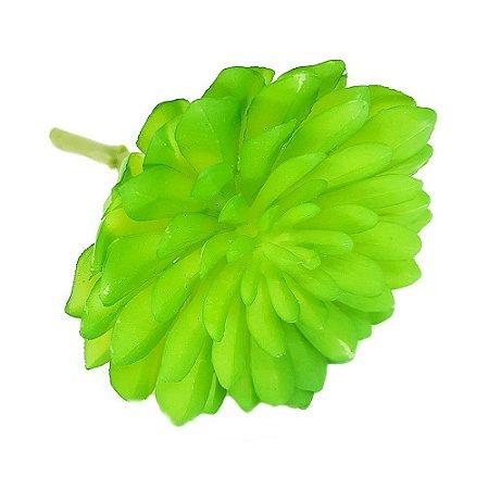 Suculenta Echeveria em Silicone Verde