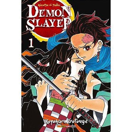 Demon Slayer - Kimetsu No Yaiba - 01