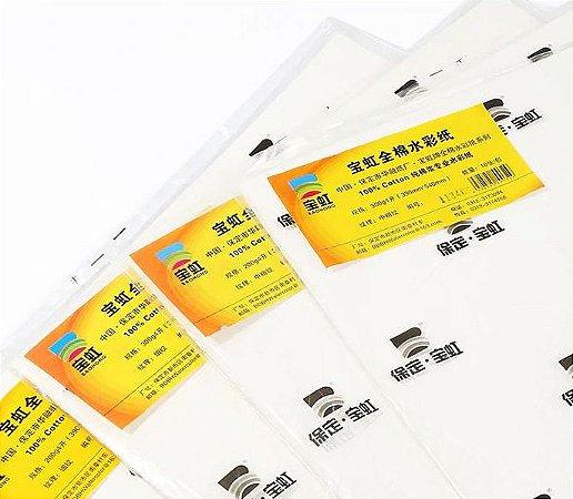 Pacote meia folha aquarela Baohong Artists' Watercolor Paper Rough 560x380mm 300gsm 10 folhas